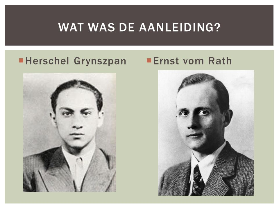 Wat was de aanleiding Herschel Grynszpan Ernst vom Rath