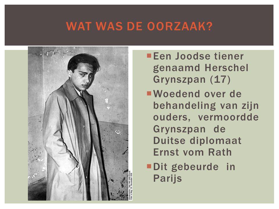 Wat was de oorzaak Een Joodse tiener genaamd Herschel Grynszpan (17)