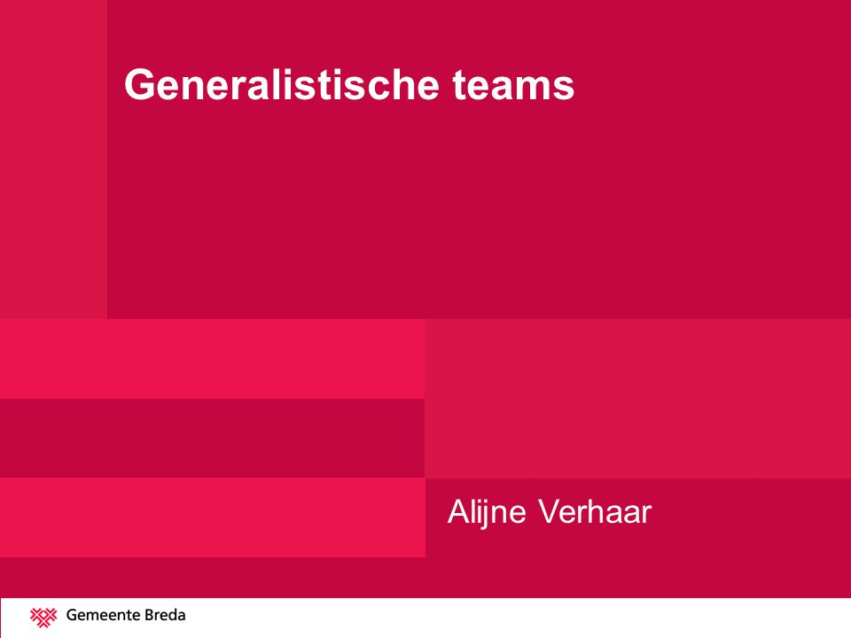Generalistische teams