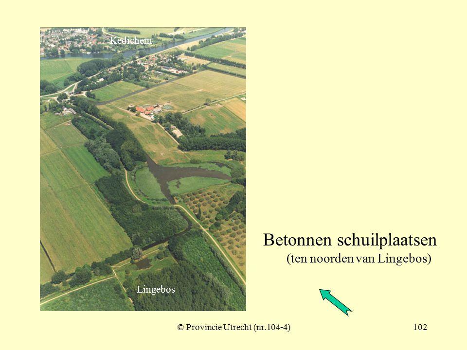 Betonnen schuilplaatsen (5) nabij Lingebos