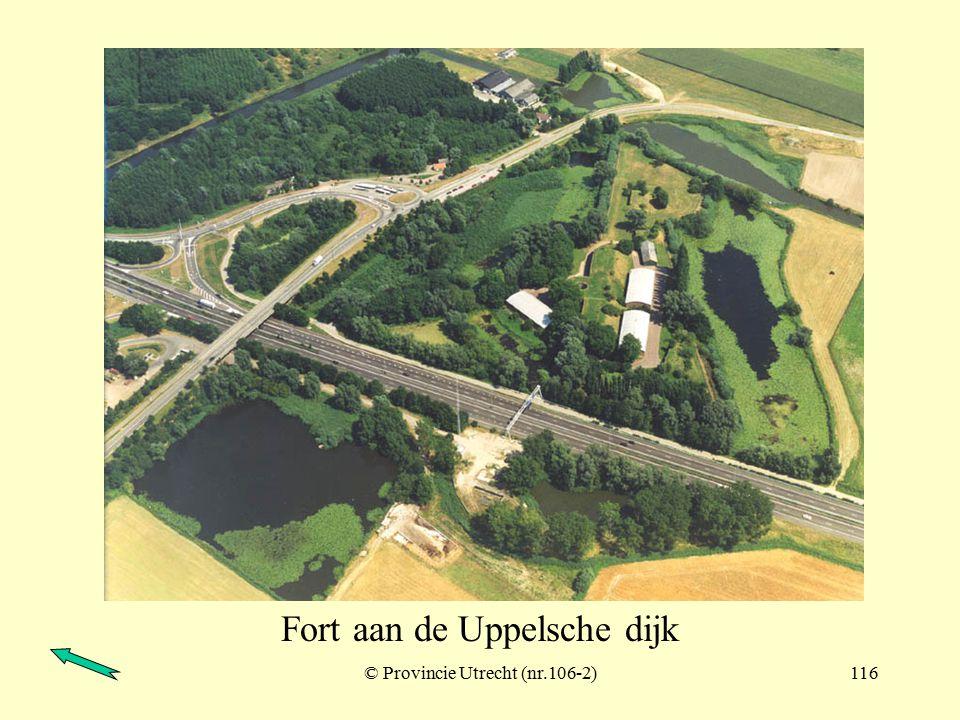 Schenkeldijk (zicht vanaf Werkendam) © Provincie Utrecht (nr.106-9)