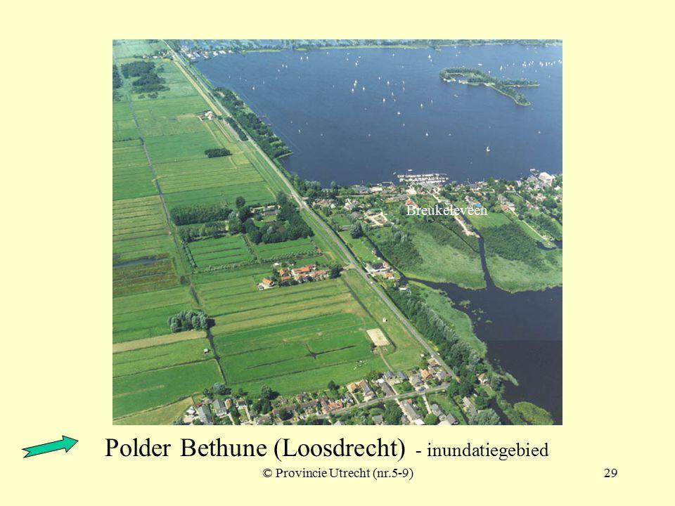 Polder Maarsseveen met Nieuwe Weg - inundatiegebied