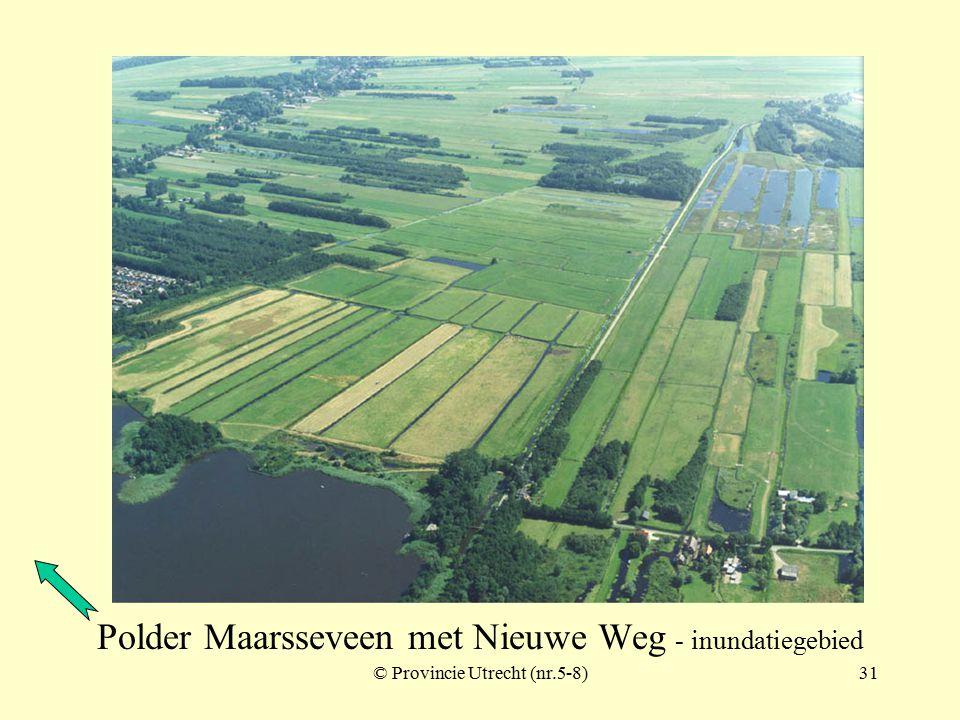 Werk bij Maarsseveen © Provincie Utrecht (970104)
