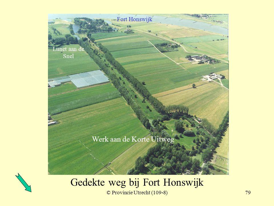 Fort Honswijk met bijbehorende werken