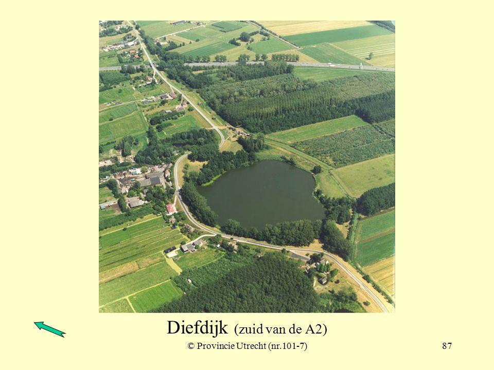 Diefdijk (ter hoogte van Schoonrewoerd)