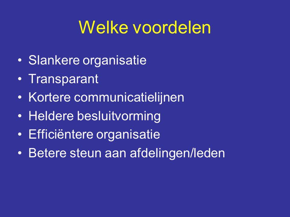Welke voordelen Slankere organisatie Transparant