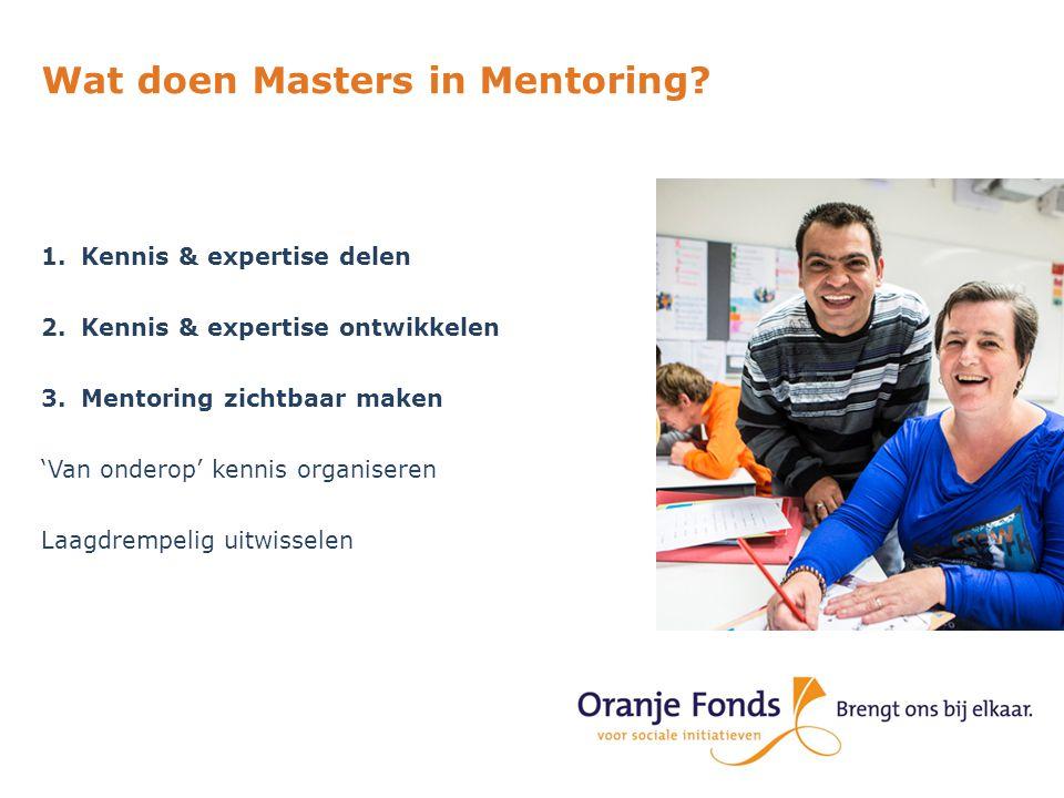 Wat doen Masters in Mentoring