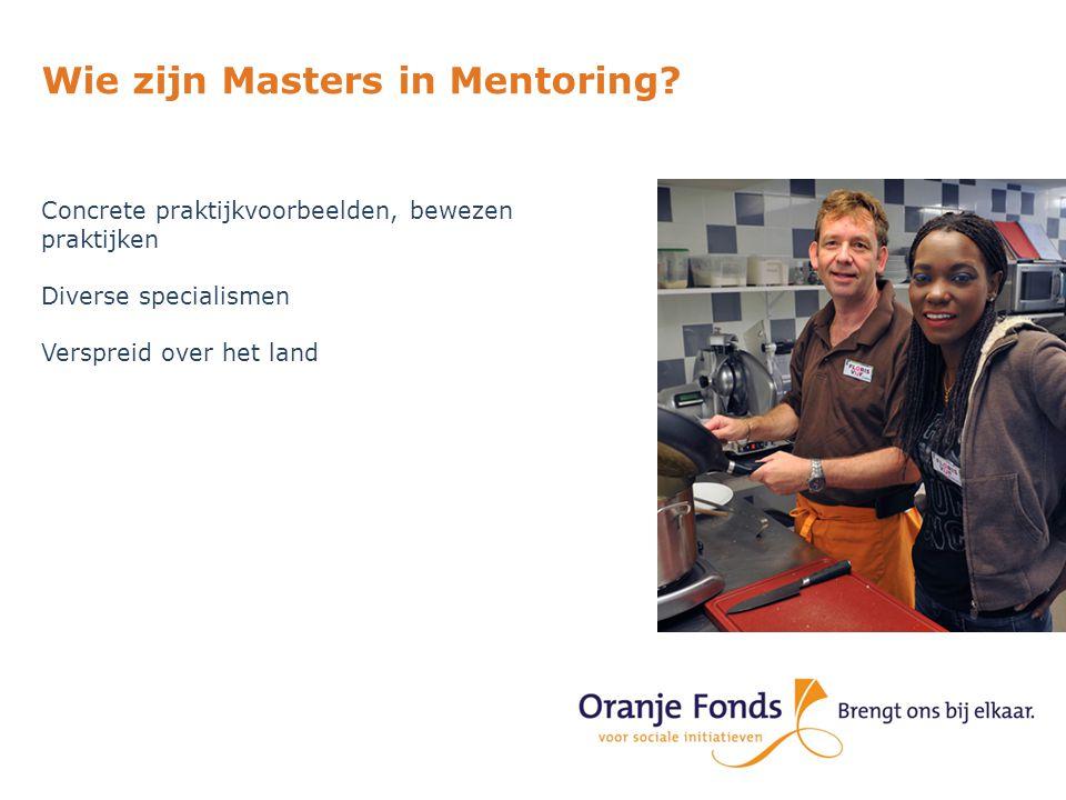 Wie zijn Masters in Mentoring