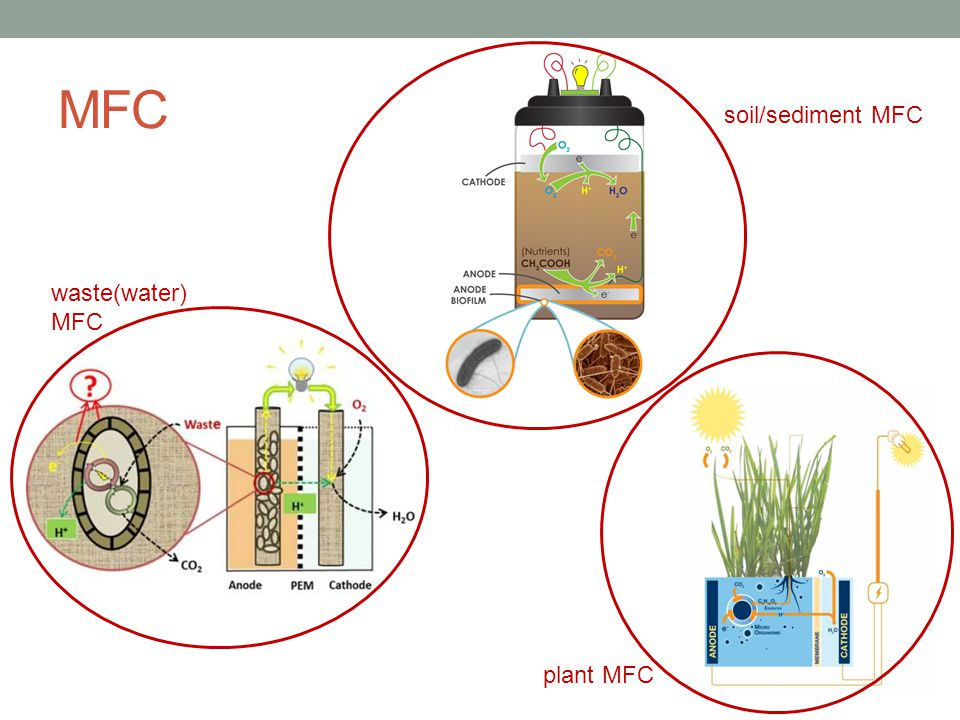 MFC soil/sediment MFC waste(water)MFC plant MFC