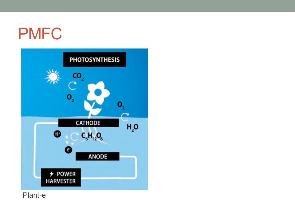 PMFC Plant-e