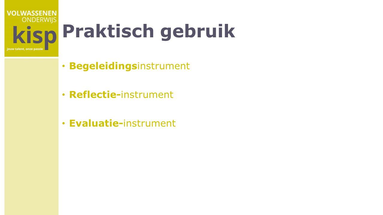 Praktisch gebruik Begeleidingsinstrument Reflectie-instrument