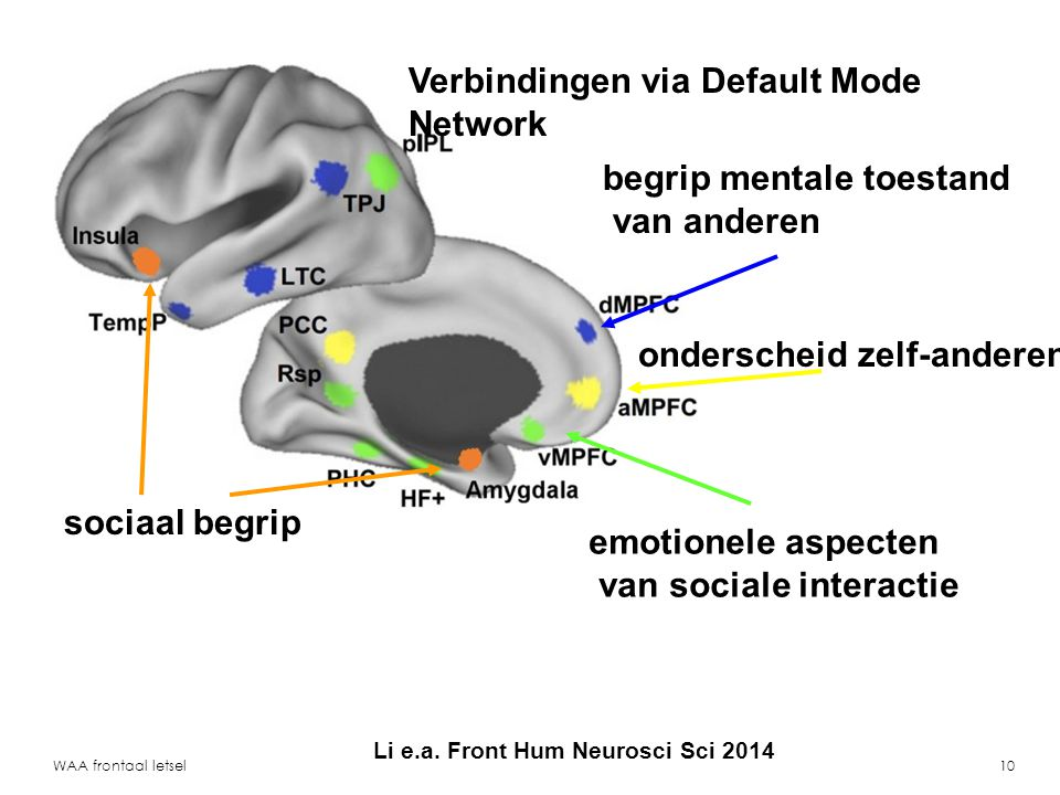 Verbindingen via Default Mode Network