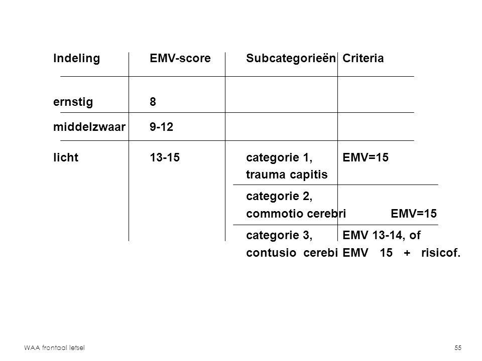 Indeling EMV-score Subcategorieën Criteria