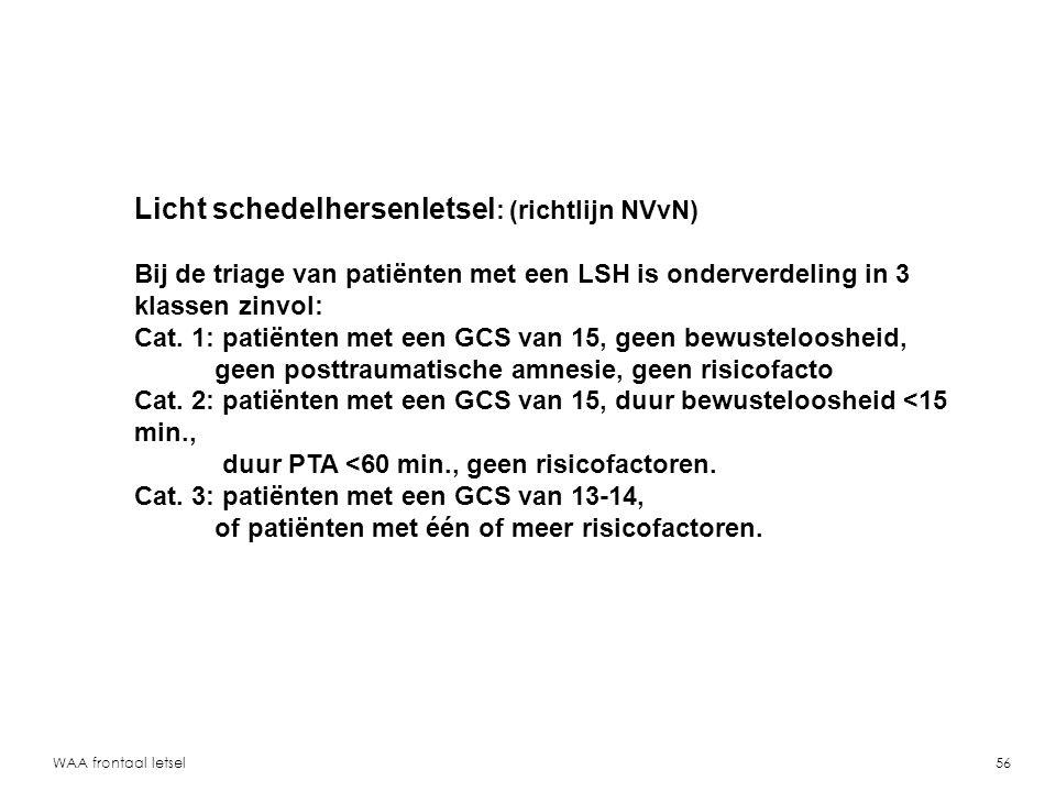 Licht schedelhersenletsel: (richtlijn NVvN)
