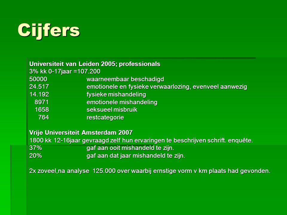 Cijfers Universiteit van Leiden 2005; professionals