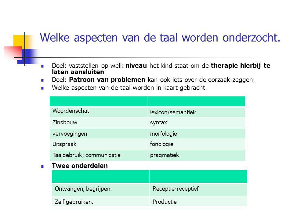 Welke aspecten van de taal worden onderzocht.