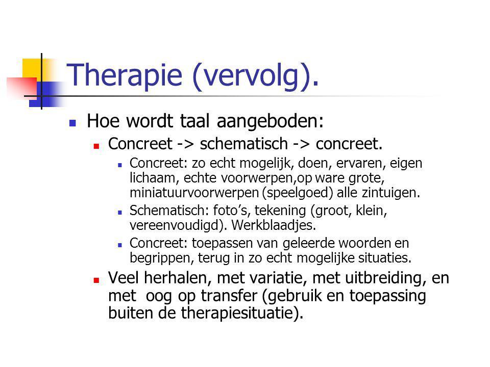 Therapie (vervolg). Hoe wordt taal aangeboden: