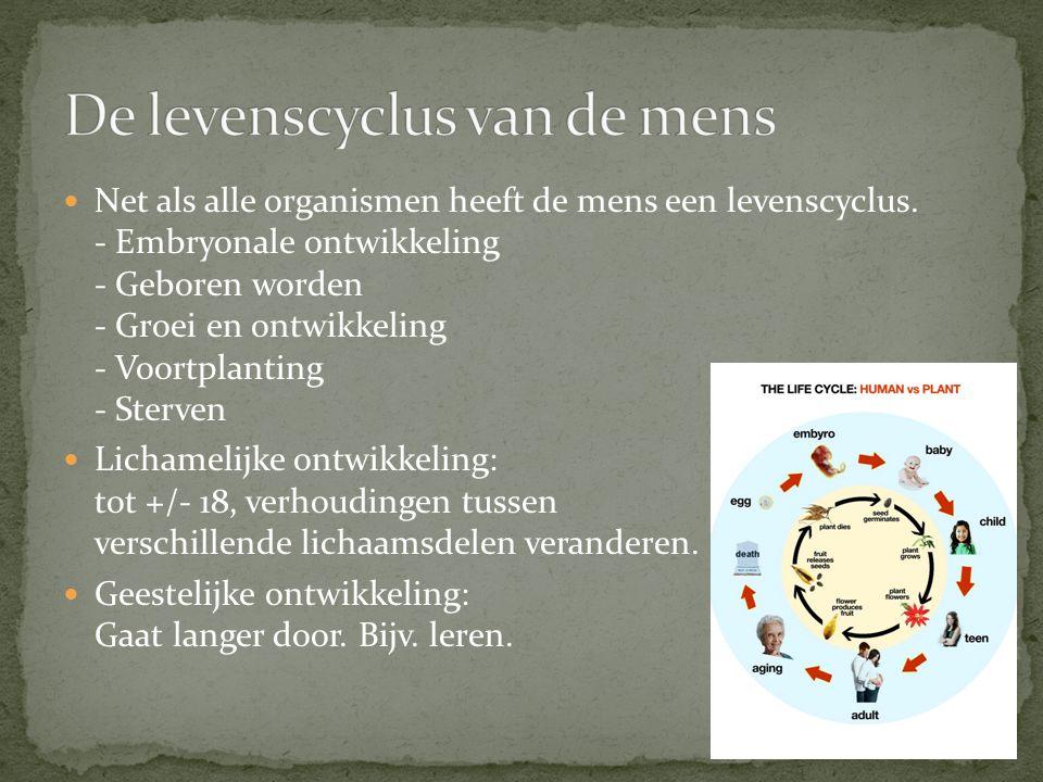 De levenscyclus van de mens