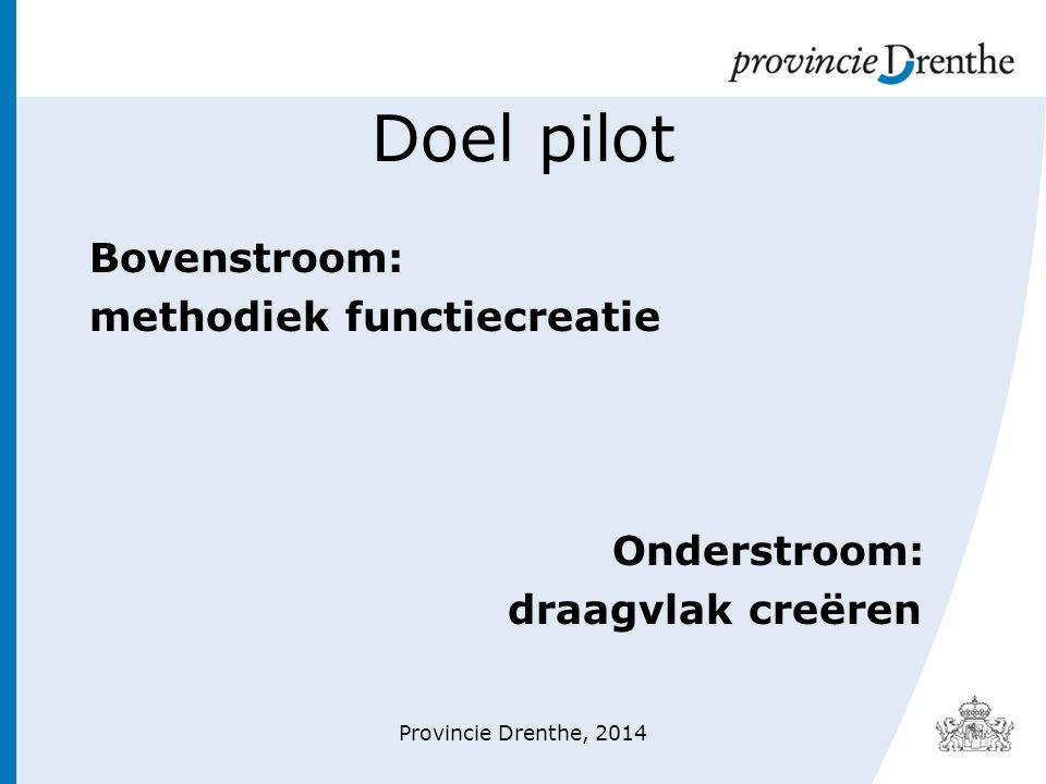 Doel pilot Bovenstroom: methodiek functiecreatie Onderstroom: draagvlak creëren