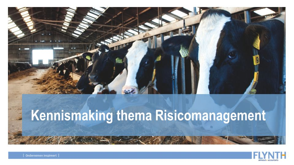 Kennismaking thema Risicomanagement