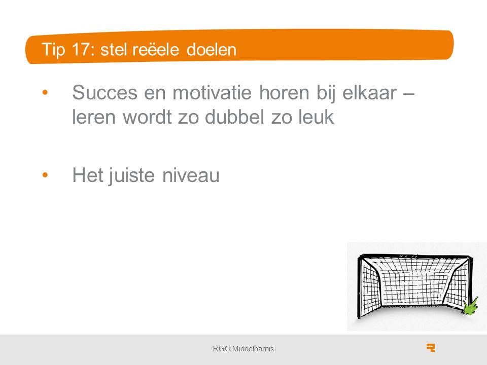 Tip 17: stel reёele doelen