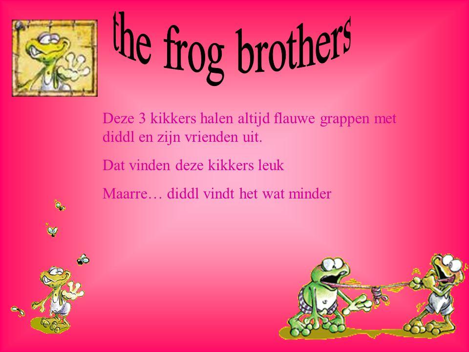the frog brothers Deze 3 kikkers halen altijd flauwe grappen met diddl en zijn vrienden uit. Dat vinden deze kikkers leuk.