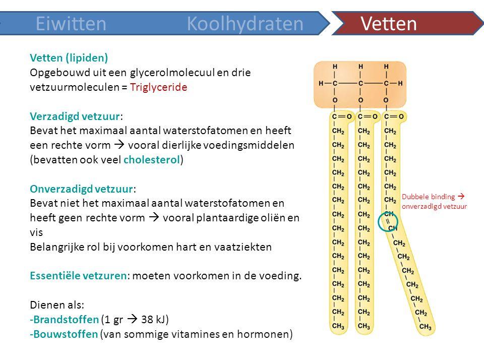 Eiwitten Koolhydraten Vetten Vetten (lipiden)