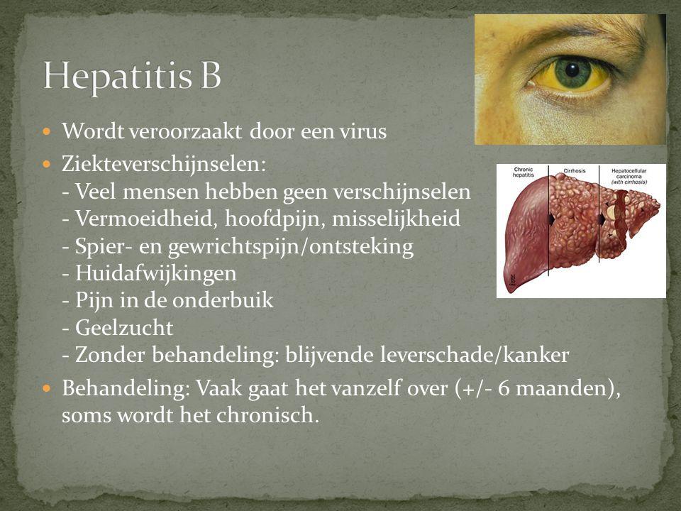 Hepatitis B Wordt veroorzaakt door een virus