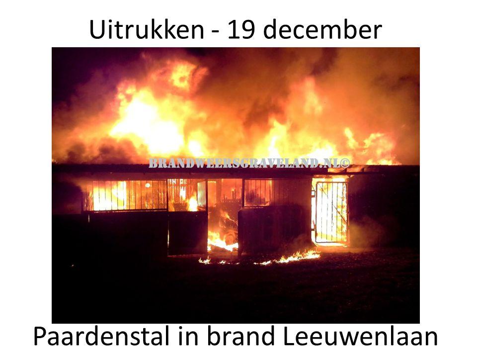 Paardenstal in brand Leeuwenlaan