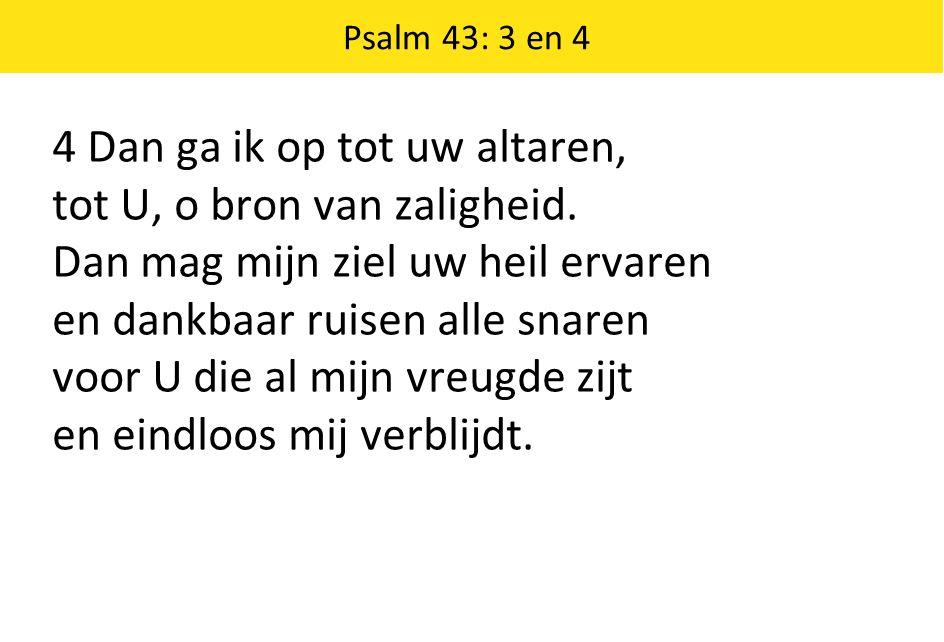 4 Dan ga ik op tot uw altaren, tot U, o bron van zaligheid.