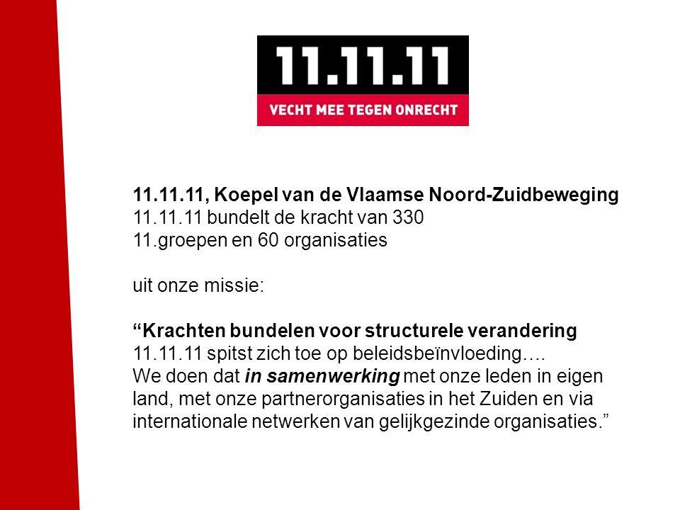 11.11.11, Koepel van de Vlaamse Noord-Zuidbeweging