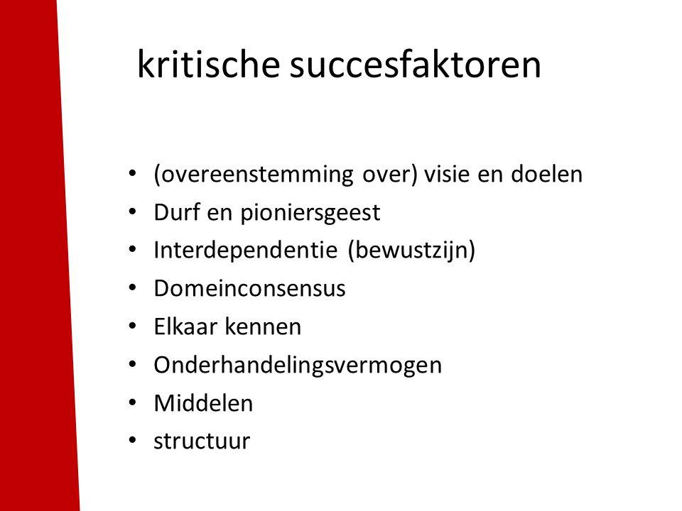 kritische succesfaktoren