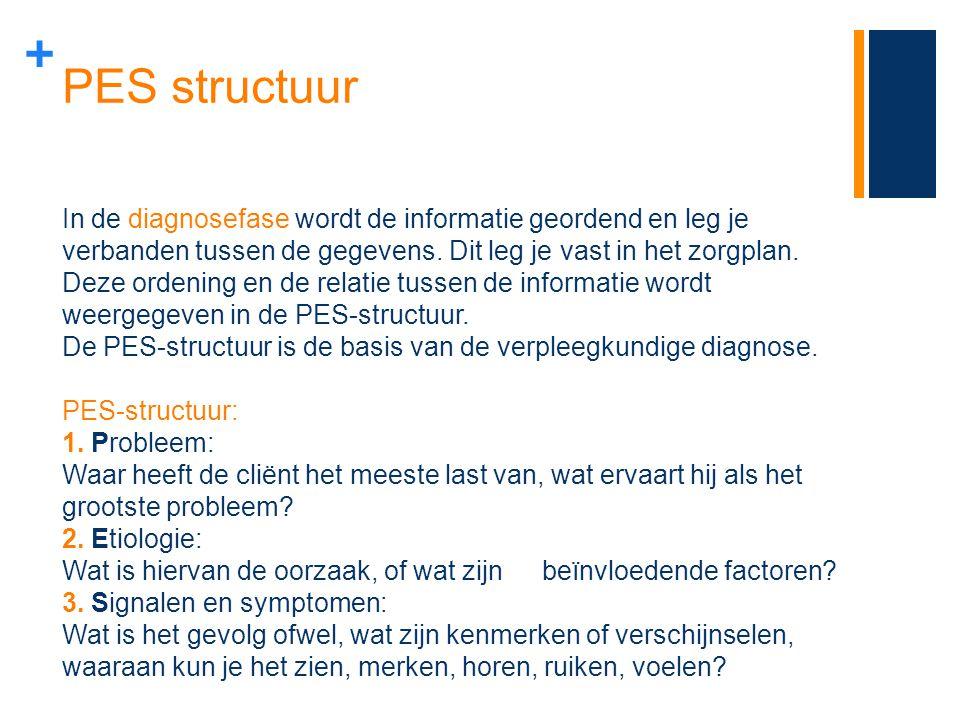 PES structuur In de diagnosefase wordt de informatie geordend en leg je.