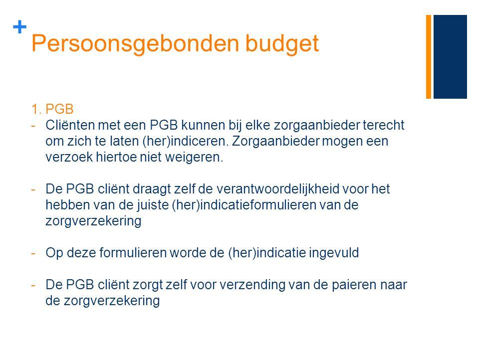 Persoonsgebonden budget