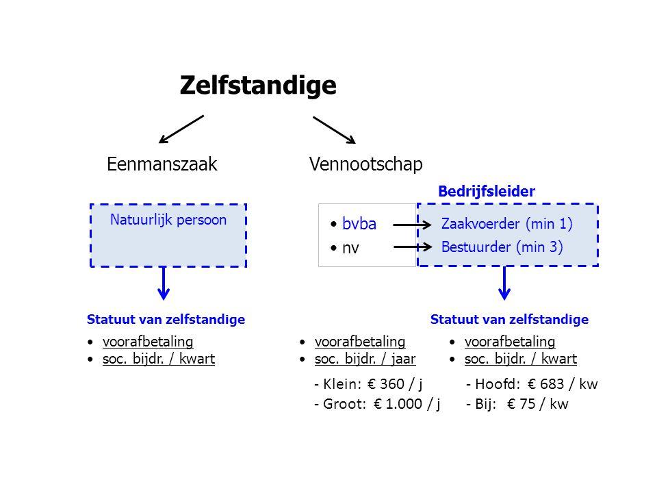 Zelfstandige Eenmanszaak Vennootschap bvba nv - Klein: € 360 / j
