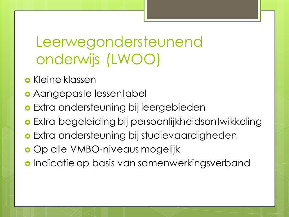 Leerwegondersteunend onderwijs (LWOO)
