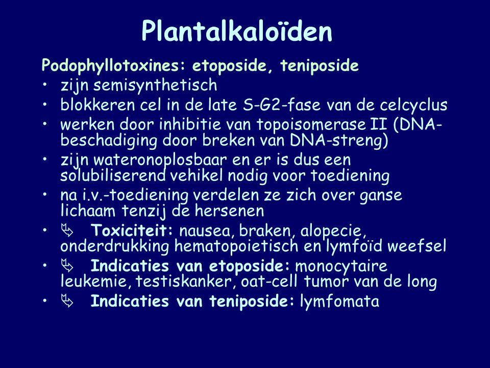 Plantalkaloïden Podophyllotoxines: etoposide, teniposide