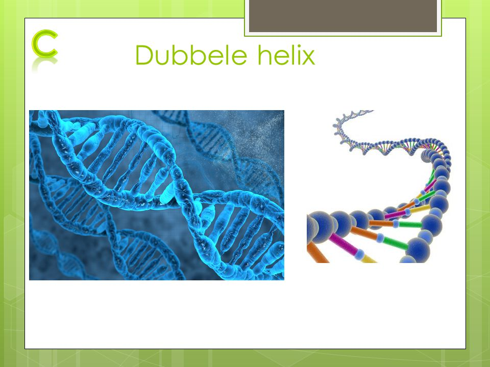 Dubbele helix c