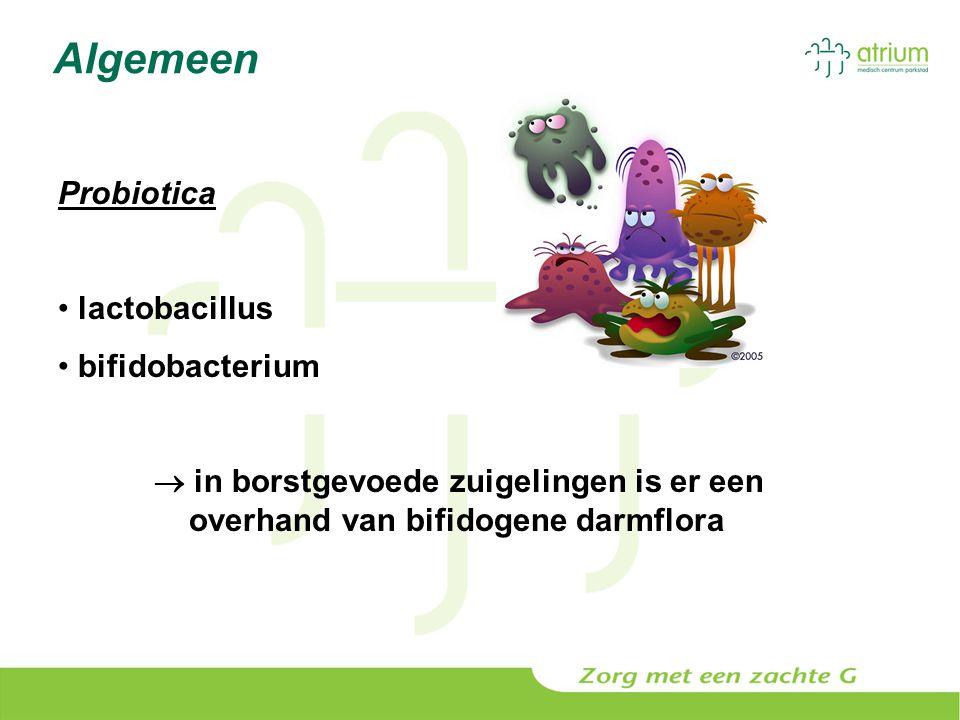 Algemeen Probiotica lactobacillus bifidobacterium