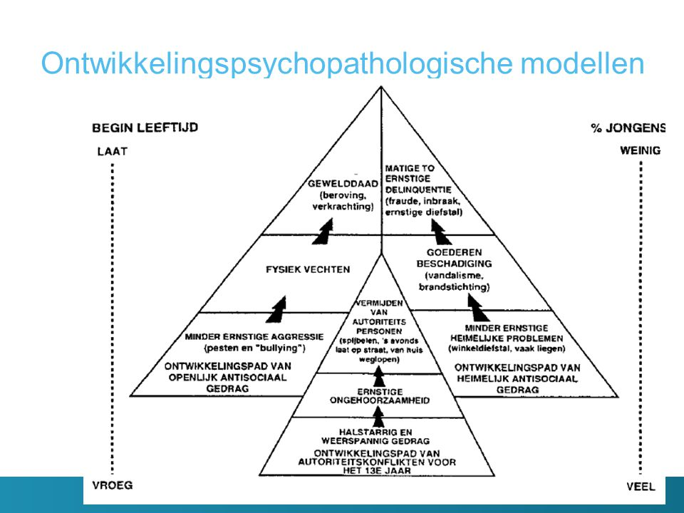 Ontwikkelingspsychopathologische modellen