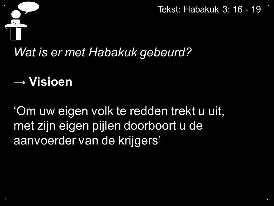 Wat is er met Habakuk gebeurd → Visioen