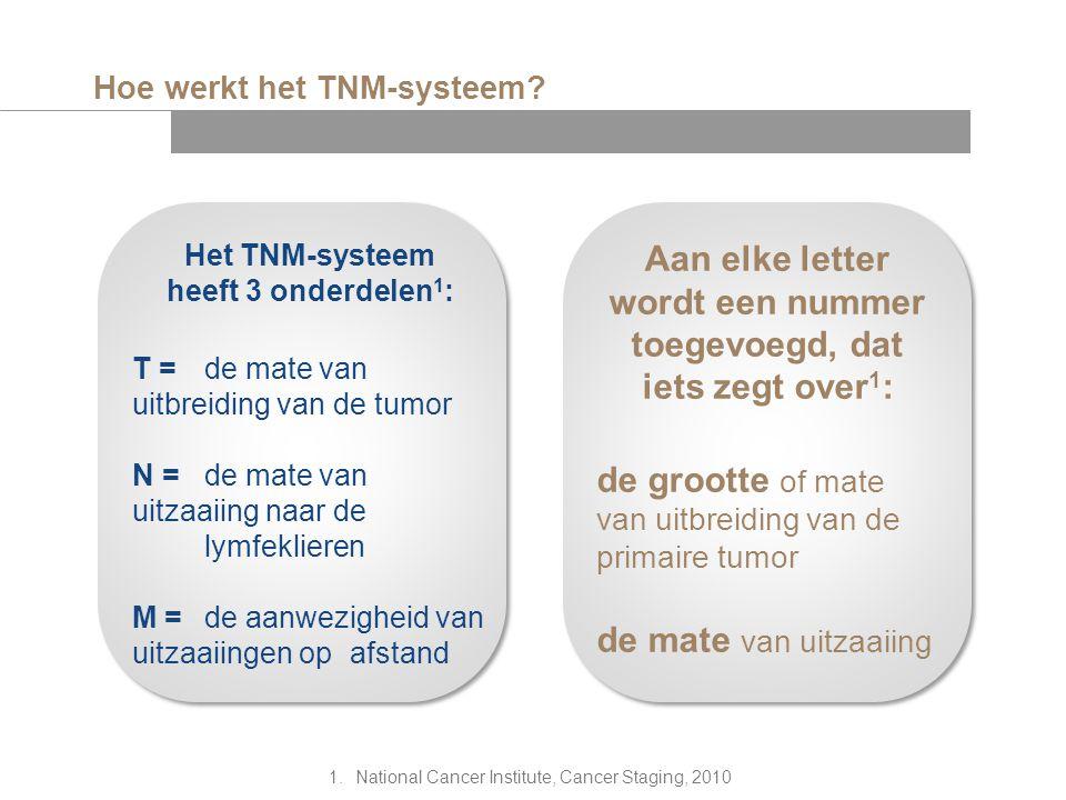 Hoe werkt het TNM-systeem