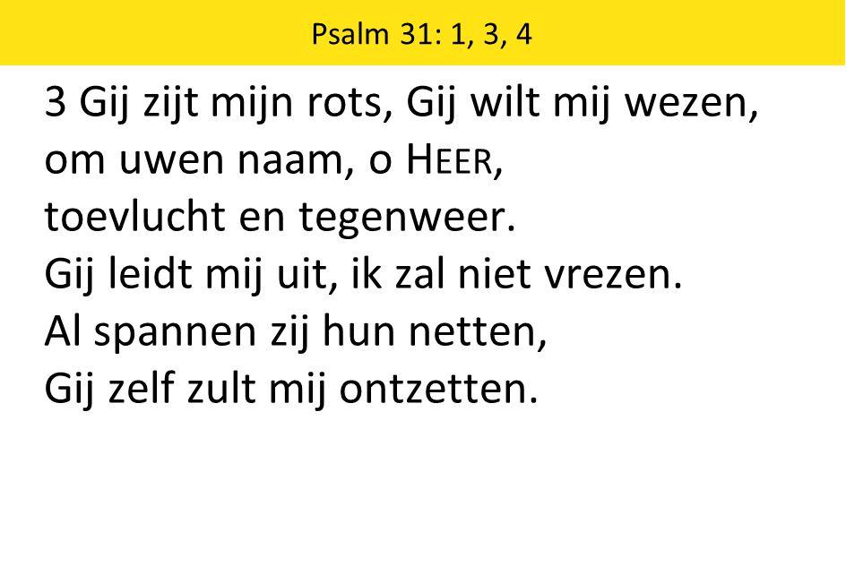 3 Gij zijt mijn rots, Gij wilt mij wezen, om uwen naam, o Heer,