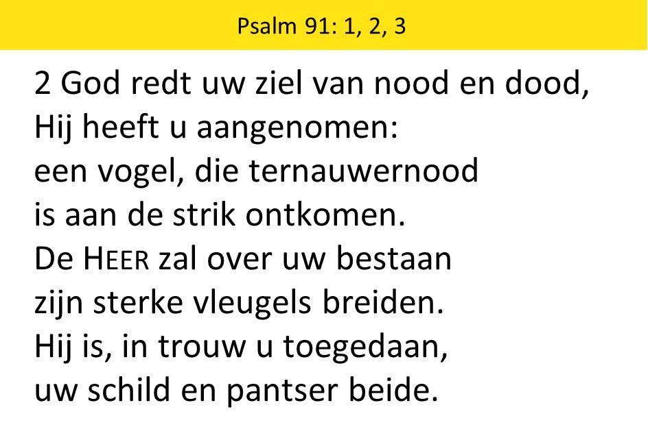 2 God redt uw ziel van nood en dood, Hij heeft u aangenomen: