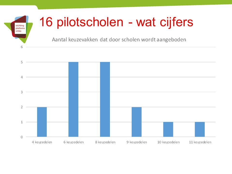 16 pilotscholen - wat cijfers