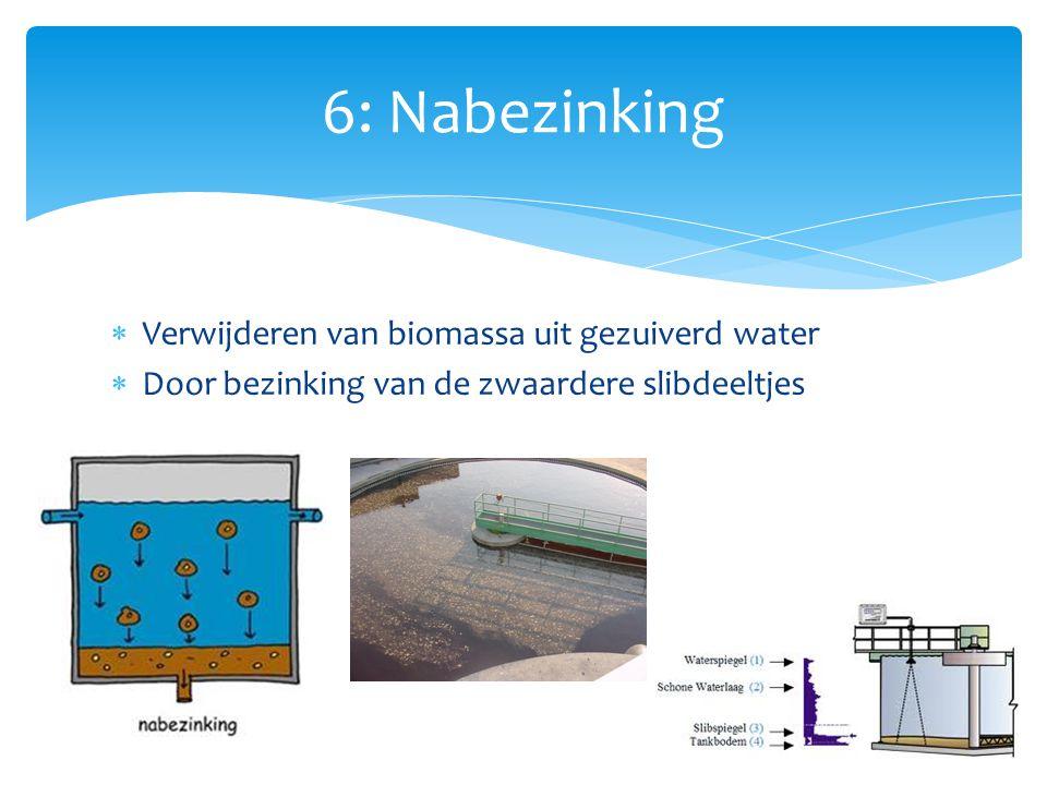 6: Nabezinking Verwijderen van biomassa uit gezuiverd water