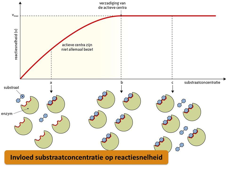 Invloed substraatconcentratie op reactiesnelheid
