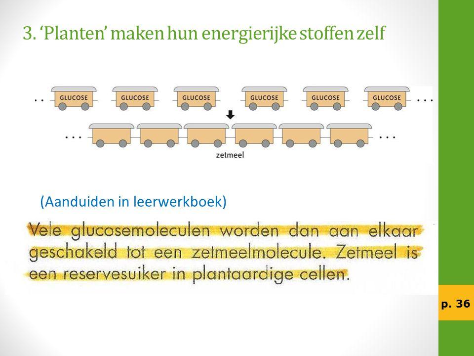 3. 'Planten' maken hun energierijke stoffen zelf