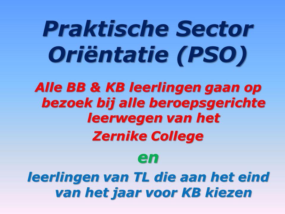 Praktische Sector Oriëntatie (PSO)