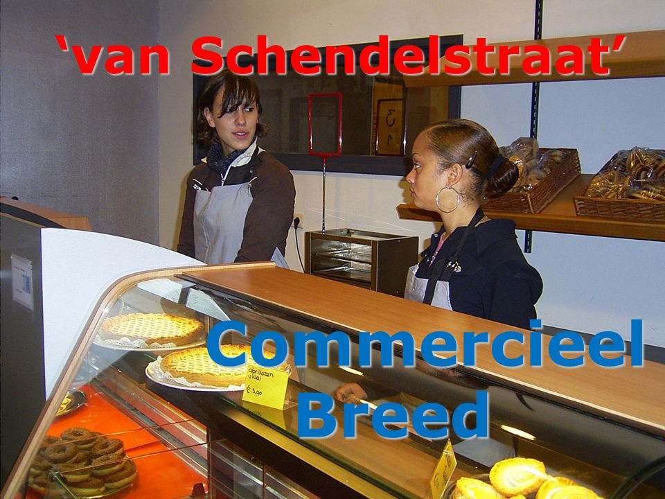 'van Schendelstraat' Commercieel Breed